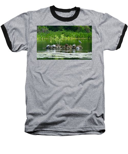 Wakulla Springs Wildlife Baseball T-Shirt