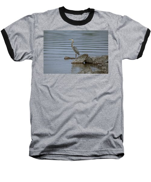 Baseball T-Shirt featuring the photograph Watchful by Eunice Gibb