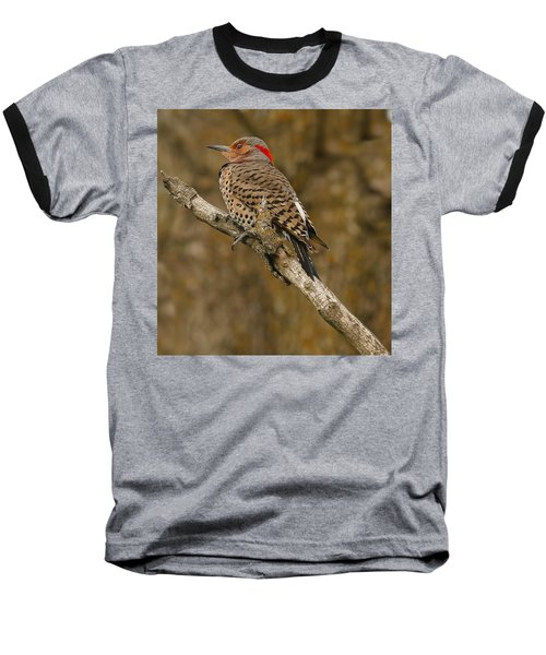 Baseball T-Shirt featuring the photograph Watchful Eye by Elizabeth Winter