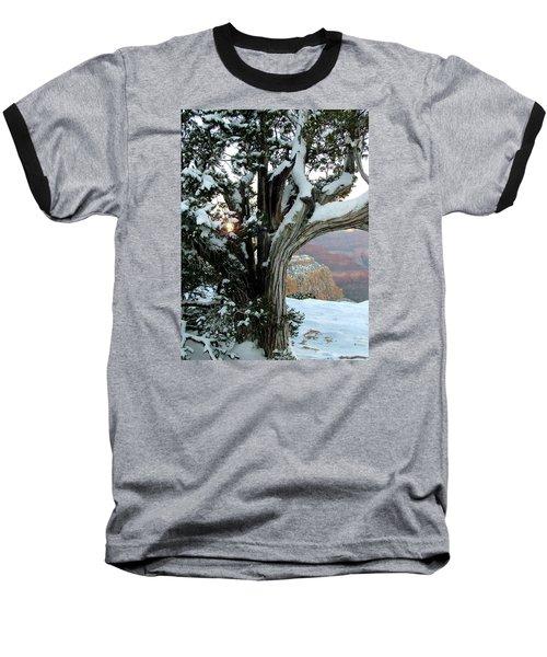 Weather Worn Baseball T-Shirt by Judy Wanamaker