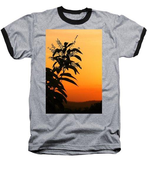Whipple Hill Baseball T-Shirt