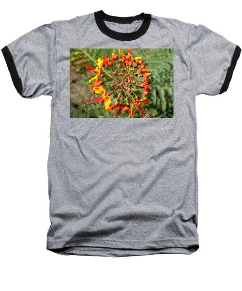Whirled Paradise Baseball T-Shirt