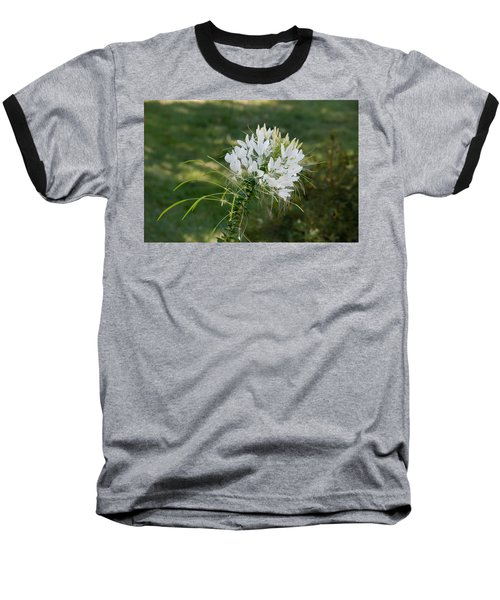 White Cleome Baseball T-Shirt