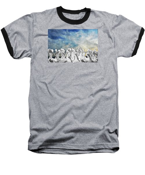 White Pelicans In Group Baseball T-Shirt by Dan Friend