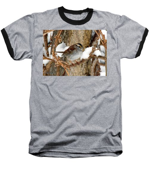 White Throat Baseball T-Shirt