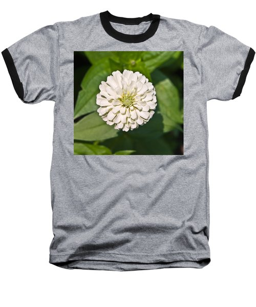 Baseball T-Shirt featuring the photograph White Zinnia And Green Leaves by Susan Leggett