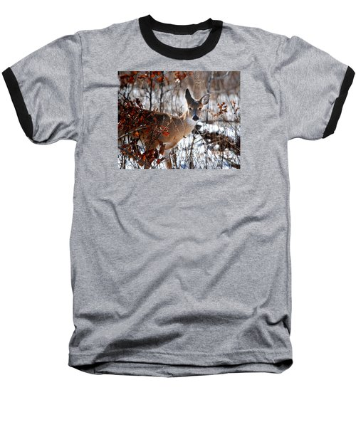 Whitetail Deer In Snow Baseball T-Shirt