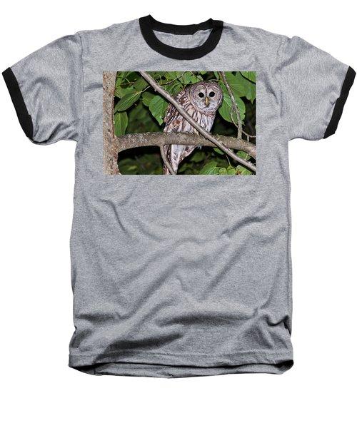 Who Are You Looking At Baseball T-Shirt by Cheryl Baxter