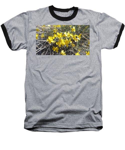 Wild Desert Flowers Baseball T-Shirt by Kume Bryant