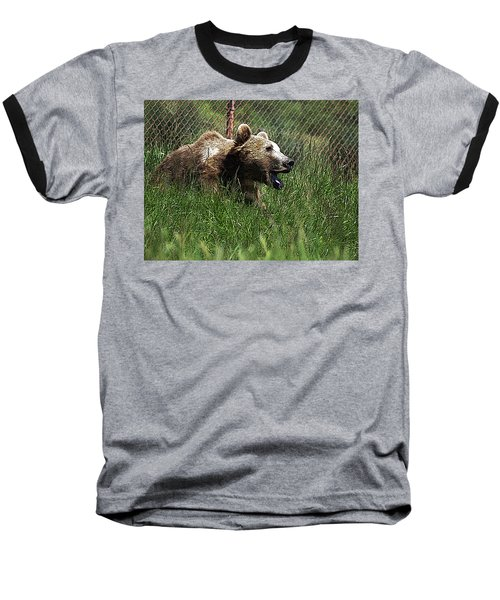 Wild Life Safari Bear Baseball T-Shirt