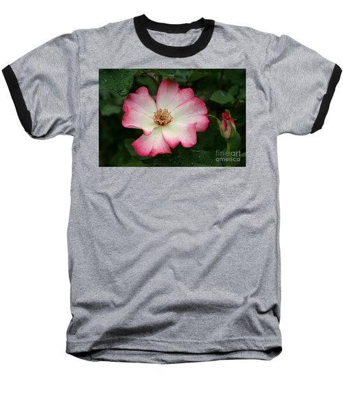 Windmill Baseball T-Shirt by Living Color Photography Lorraine Lynch