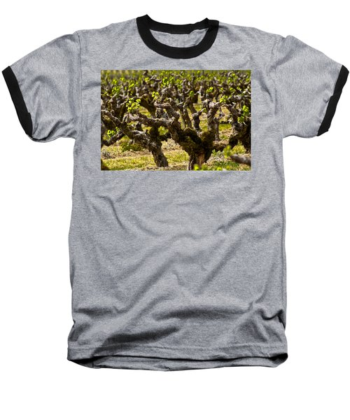 Wine On The Vine Baseball T-Shirt