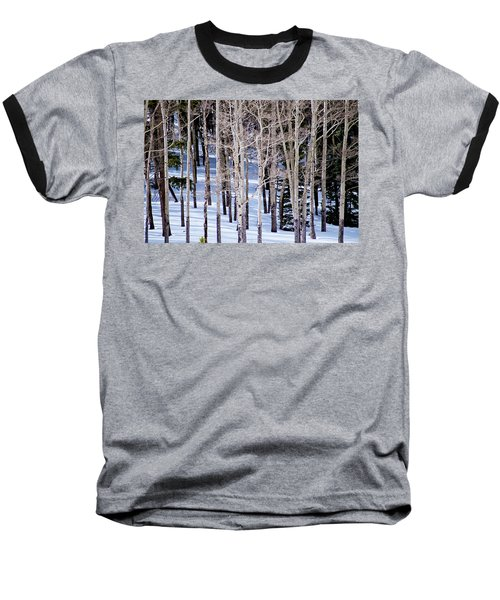 Winter Aspens Baseball T-Shirt by Colleen Coccia