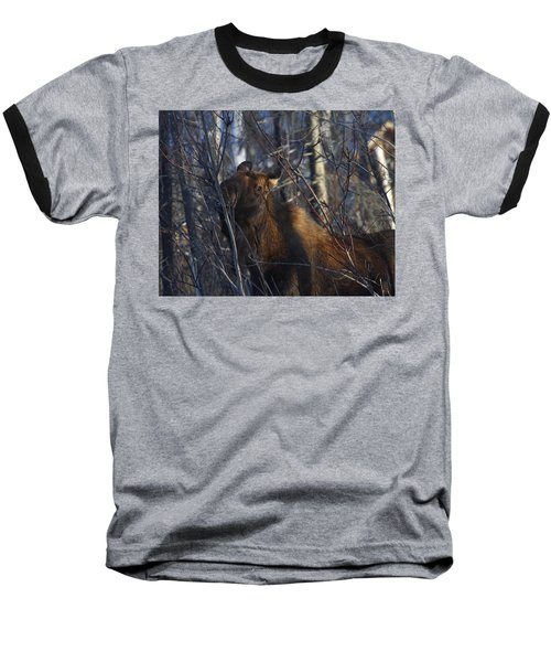 Baseball T-Shirt featuring the photograph Winter Food by Doug Lloyd