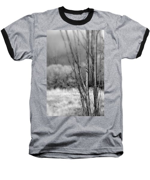 Baseball T-Shirt featuring the photograph Winters Branch by Kathleen Grace
