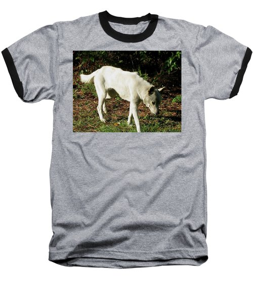 Baseball T-Shirt featuring the photograph Wolf 2 by Maria Urso