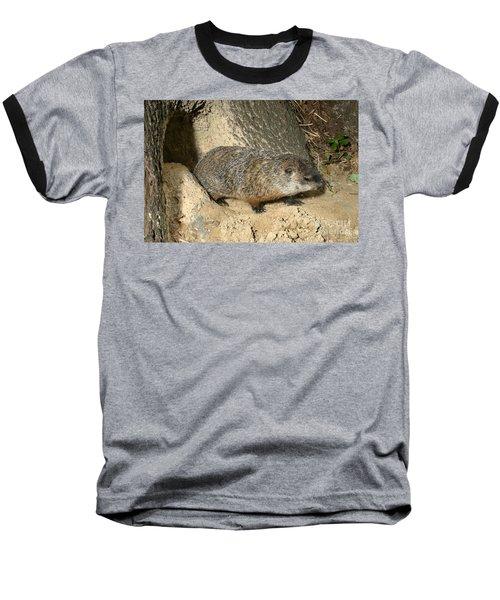 Woodchuck Baseball T-Shirt by Ted Kinsman