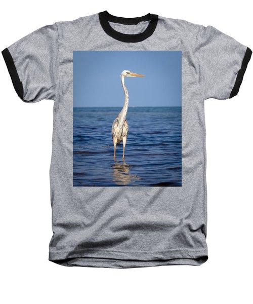 Wurdemann's Heron Baseball T-Shirt