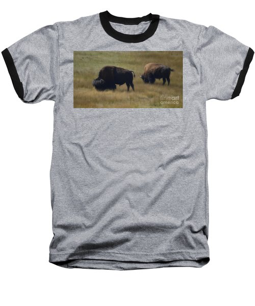 Wyoming Buffalo Baseball T-Shirt