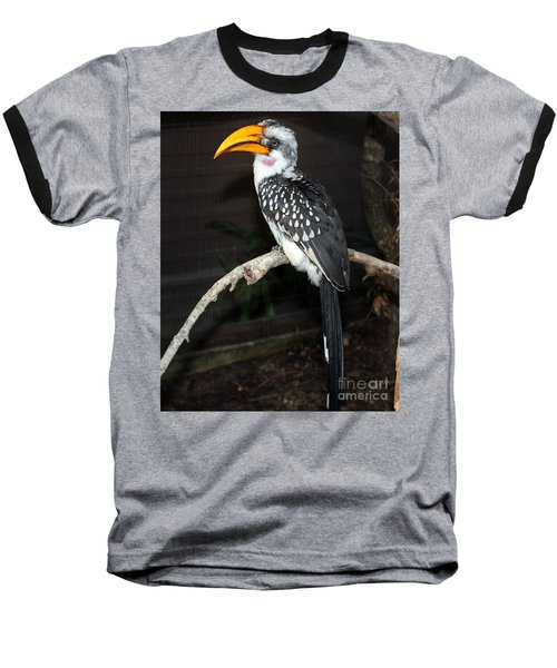 Baseball T-Shirt featuring the photograph Yellow-billed Hornbill by Kathy  White