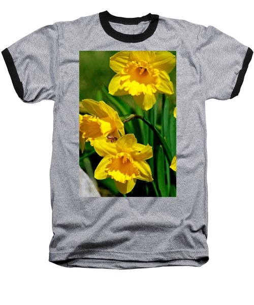 Baseball T-Shirt featuring the photograph Yellow Daffodils And Honeybee by Kay Novy