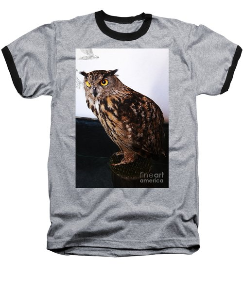 Yellow-eyed Owl Side Baseball T-Shirt