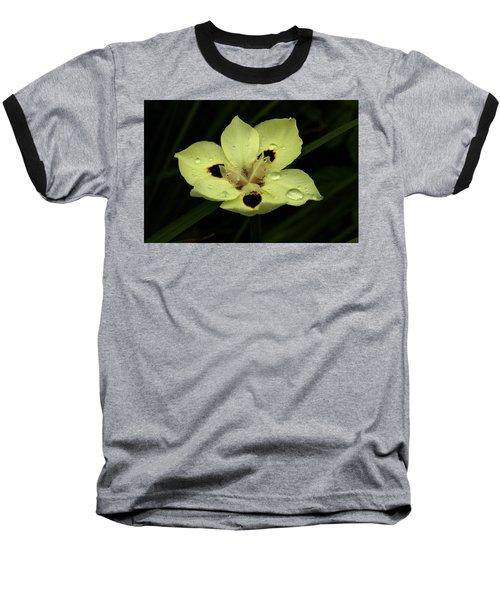 Yellow Iris With Rain Drops Baseball T-Shirt