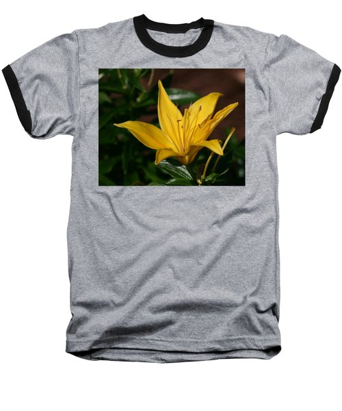 Yellow Lily Baseball T-Shirt by Bill Barber