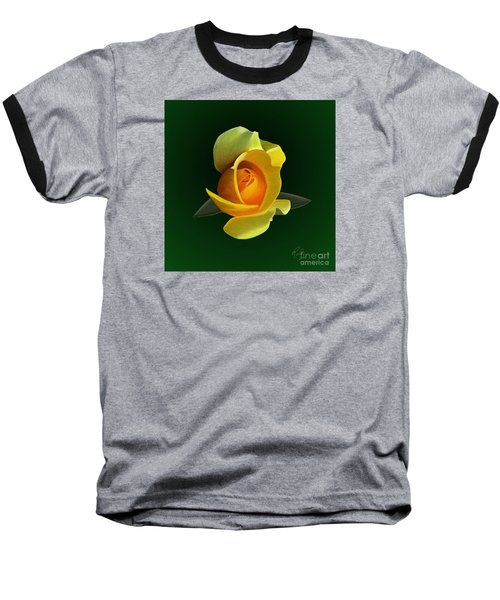 Yellow Rose Baseball T-Shirt by Rand Herron