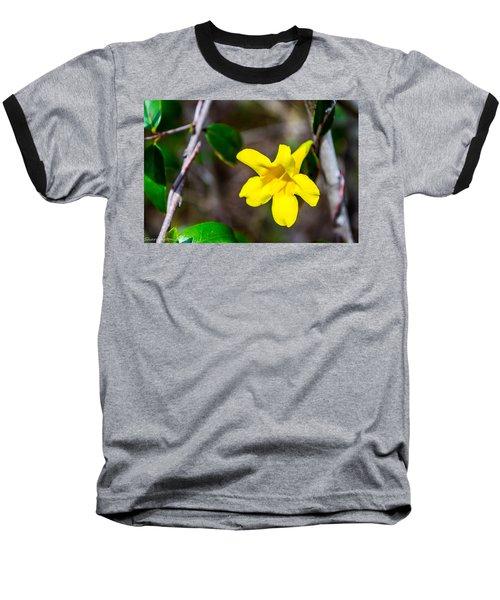 Baseball T-Shirt featuring the photograph Yellow by Shannon Harrington