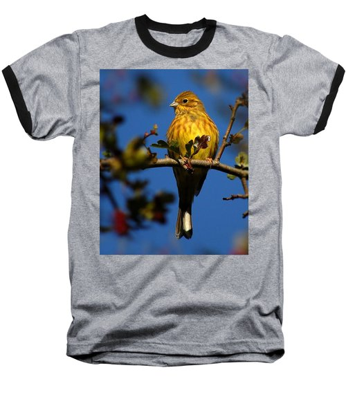 Yellowhammer Baseball T-Shirt