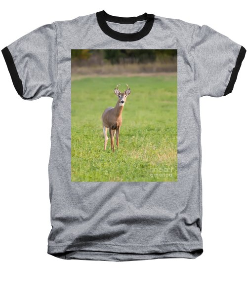 Baseball T-Shirt featuring the photograph Young Buck by Art Whitton