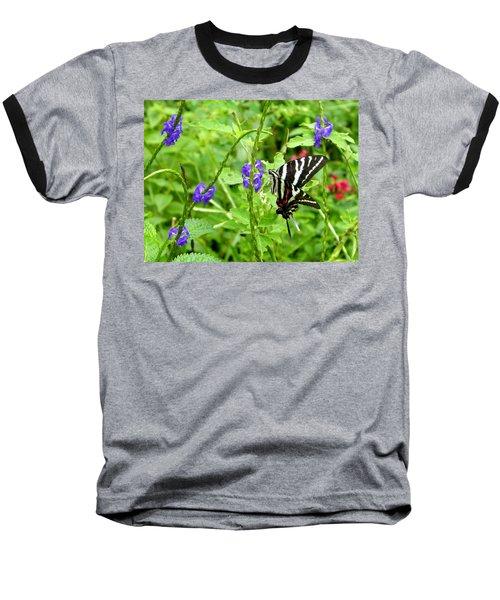 Zebra Swallowtail On Blue Porterweed Baseball T-Shirt by Judy Wanamaker
