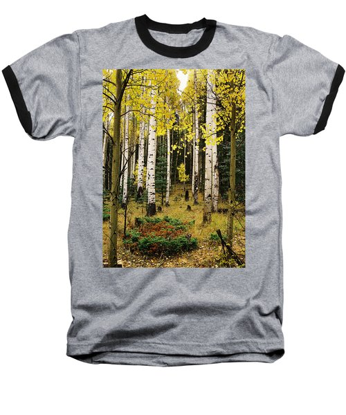 Aspen Grove In Upper Red River Valley Baseball T-Shirt