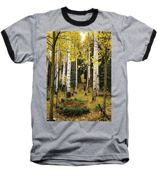 Aspen Grove In Upper Red River Valley Baseball T-Shirt