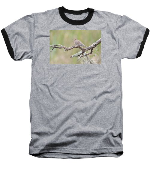 Baseball T-Shirt featuring the photograph    Early Mourning Dove by Kathy Gibbons