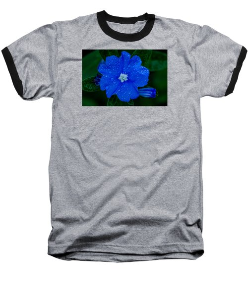 Baseball T-Shirt featuring the photograph  Evolvulus Glomeratus by Keith Hawley