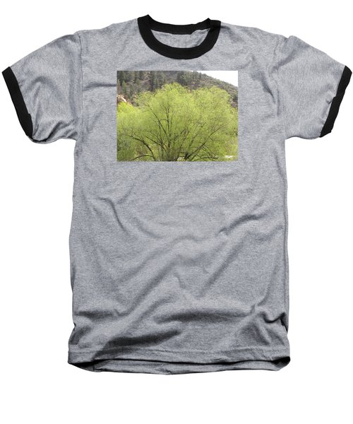 Tree Ute Pass Hwy 24 Cos Co Baseball T-Shirt