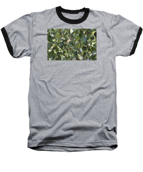 Flight Of The Hummingbird Baseball T-Shirt