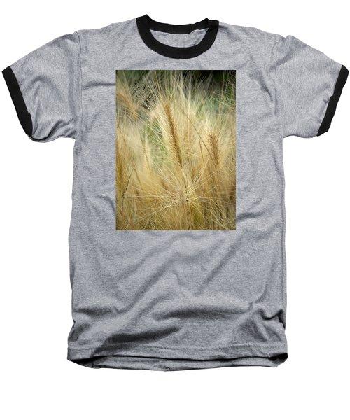 Foxtail Barley Baseball T-Shirt by Jouko Lehto
