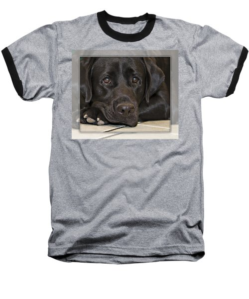 Labrador Retriever A1a Baseball T-Shirt