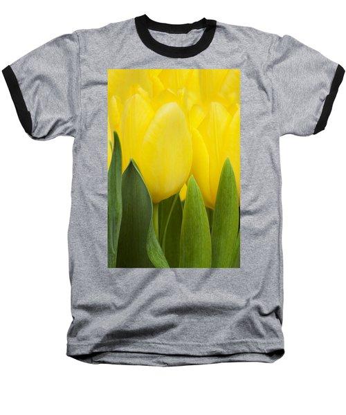 Spring Yellow Tulips Baseball T-Shirt