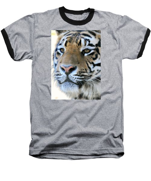 Tiger Portrait  Baseball T-Shirt by Mindy Bench