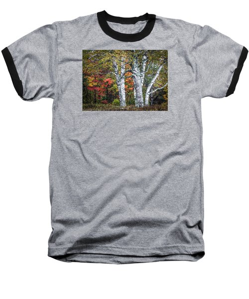 #0050 - Birch Trees Baseball T-Shirt