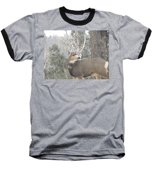 Buck Front Yard Divide Co Baseball T-Shirt