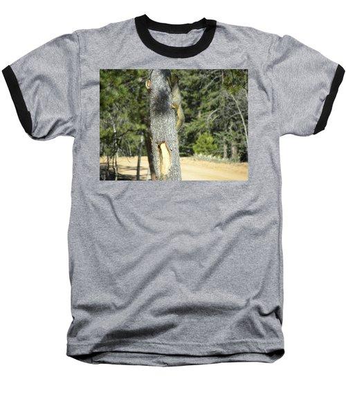 Squirrel Home Divide Co Baseball T-Shirt