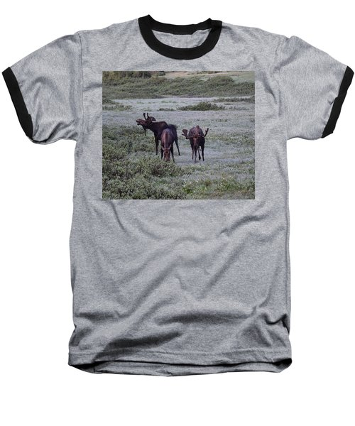 Moose Cameron Pass Co Baseball T-Shirt