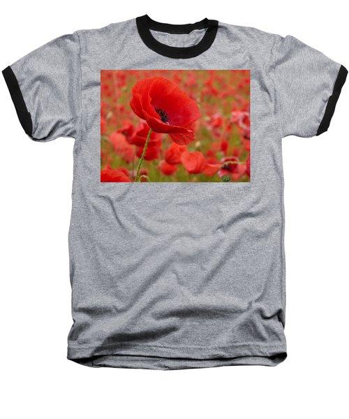 Red Poppies 3 Baseball T-Shirt by Jouko Lehto