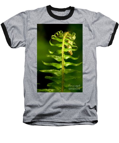 A Light In The Forest Baseball T-Shirt by Sean Griffin