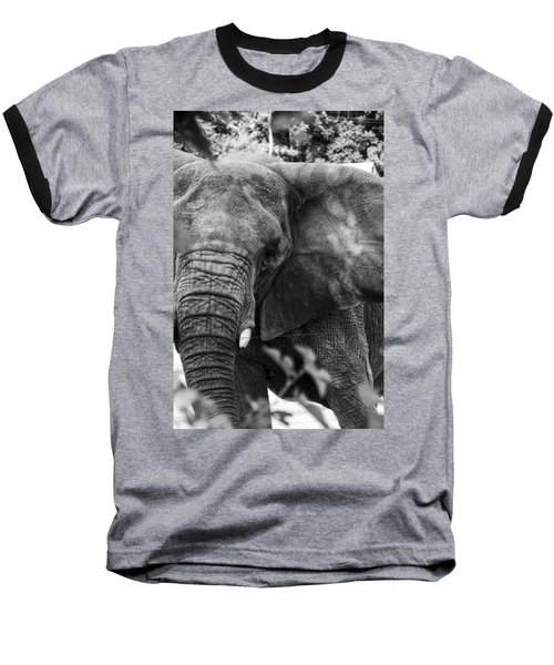 Baseball T-Shirt featuring the photograph African Elephant  by Kevin Blackburn